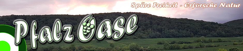 Pfalz Oase – Wandern in der Pfalz